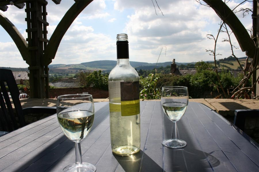 Enjoy a glass of wine in The Castle Hotel Gardens