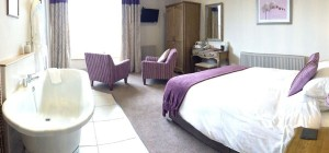 Room 2 at The Castle Hotel in Shropshire