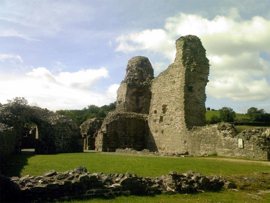 Montgomery Castle