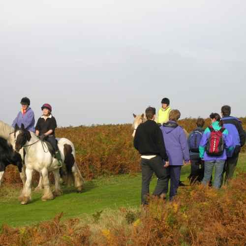 Riding across the Longmynd, Shropshire